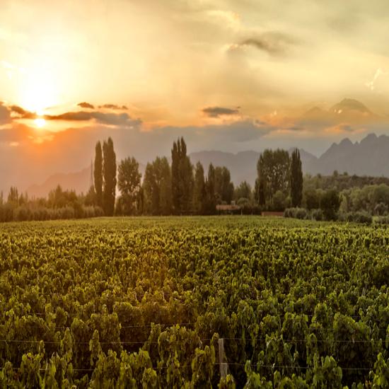 Vales de Mendoza – Entre Cielos